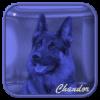 Chandor