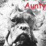 AuntyEntity