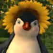 Crispy_Pinguin