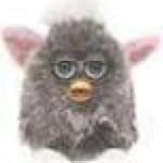 avatar for فرحان خالد