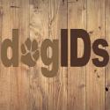 Avatar of dogids