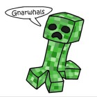 View Gnarwhals's Profile