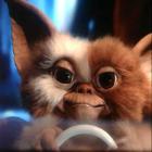 View TechGremlin's Profile