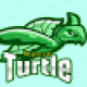 TheMagicTurtle1