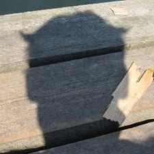 Avatar for sebas86 from gravatar.com