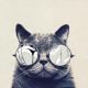 Longcatz64's avatar
