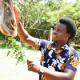 Emmanuel Wambua