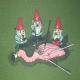 gnomehunter