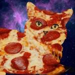 pizzacat