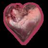 Coeur Noir