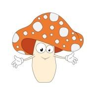 mushroom-spores