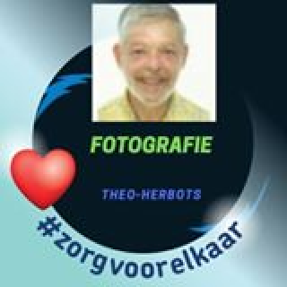 Theo Herbots Blogger, Websitecreator, MLM