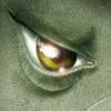 Morton avatar