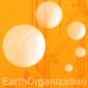 Earth Organization