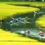 Visa Vietnam