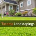 Avatar of tacomalandscape