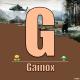 Gainox
