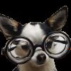 1GurU9's avatar