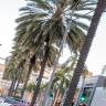 Extomine