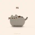 cat_ladybug's Photo