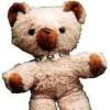 Teddylein