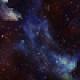 Kemonoo1's avatar