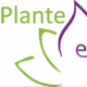 Plante Essentielle