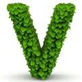 vesper - 1 συνεισφορές τις τελευταίες 90 ημέρες