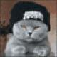 Ceromus's avatar