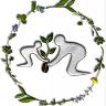 Herbal Hindsight