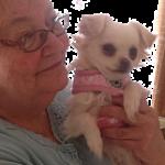 Jane Christensen's profile picture