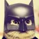 krike06's avatar