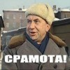 petya_and_volf avatar