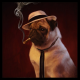 Vexxy's avatar