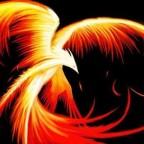 Phoenix's Avatar