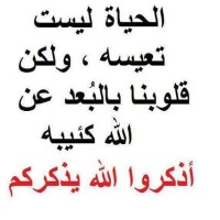alaa1sayed