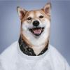 fastteag's avatar