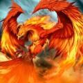 phoenixflambeau