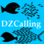 A small portrait of DZCalling