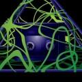 Avatar for draeke