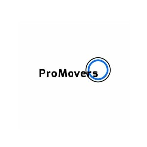 Avatar of Pro Movers Miami