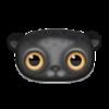 Yuffa avatar