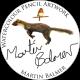 Profile picture of martinbalmer