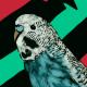 EliteShadow83's avatar