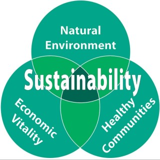 Welcome to Be Sustainable Today!
