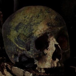 Cráneo de Pangea