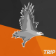 TripTorque