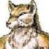 Marcwolf