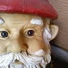 View TheGnomeo's Profile