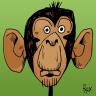 ChimpanzeeUK